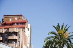 Palmeiras contra um céu azul e uma construção com as nuvens finas em Barcelona, Espanha Dia ensolarado azul bonito Palma da árvor Fotografia de Stock Royalty Free