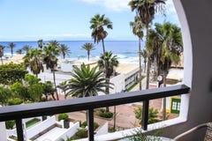 Palmeiras do balcão da sala da vista para o mar imagens de stock royalty free