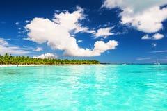Palmeiras do coco no Sandy Beach branco na ilha de Saona, Dominic Foto de Stock