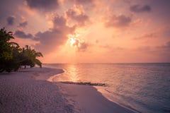 Palmeiras do por do sol da praia e Sandy Beach calmo Céu e nuvens e fundo bonitos da praia para o feriado e o curso das férias de imagem de stock royalty free