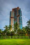 Palmeiras e arranha-céus em Miami Beach, Florida Fotografia de Stock Royalty Free