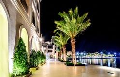 Palmeiras e as construções nas luzes da noite em Marina Porto Fotografia de Stock Royalty Free