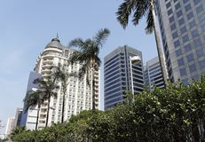 Palmeiras e edifício clássico Foto de Stock Royalty Free