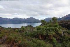 Palmeiras e lago verdes Wakatipu na movimentação cênico de Glenorchy, Nova Zelândia fotos de stock