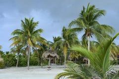 Palmeiras e palapas na areia branca em uma praia das caraíbas em México fotografia de stock