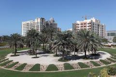 Palmeiras em Dubai imagens de stock royalty free