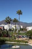 Palmeiras em Estepona, Spain Imagem de Stock Royalty Free