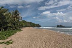 Palmeiras em uma praia calma, mar das caraíbas, Puerto Viejo de Talamanca, Costa Rica Foto de Stock Royalty Free