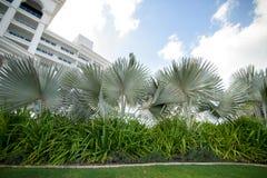Palmeiras, gramado, céu com nuvens Folhas de palmeira Recurso pelo mar Fotografia de Stock
