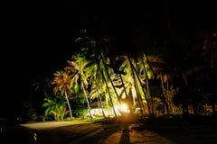 Palmeiras na praia na noite Imagens de Stock Royalty Free