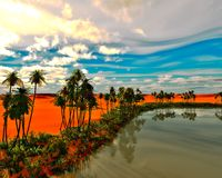 Palmeiras no deserto foto de stock royalty free