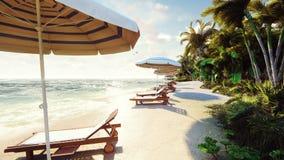 Palmen über Tropeninsel mit exotischem weißem Strand herein am sonnigen Tag mit blauem Himmel Schöne Sommerszene stock video