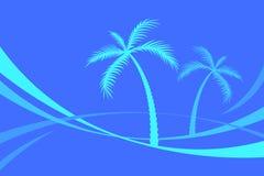 Palmen lizenzfreie abbildung