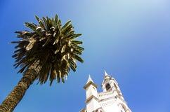 Palmen, adembenemende architectuur en duidelijke blauwe hemel Stock Afbeeldingen