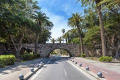 Palmen-Allee Kos-Insel Lizenzfreies Stockbild