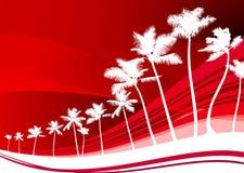 Palmen auf abstraktem rotem Hintergrund Lizenzfreie Stockfotos