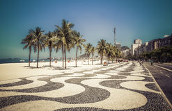 Palmen auf Copacabana-Strand in Rio de Janeiro Stockfotografie