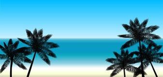 Palmen auf dem Hintergrund des Meeres stock abbildung