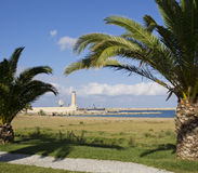Palmen auf dem Strand Lizenzfreie Stockfotos
