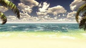 Palmen auf einer Tropeninsel mit blauem Meer und schöner Strand an einem sonnigen Tag Palmen, Sonne und Wellen Loopable stock video footage