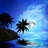 Palmen a auf Sonnenunterganghintergrund Lizenzfreies Stockbild