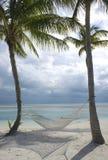 Palmen auf Strand Lizenzfreie Stockfotos