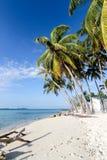Palmen auf tropischem Strand Lizenzfreies Stockfoto