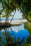 Palmen bei Seychellen lizenzfreies stockfoto