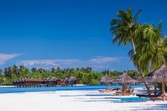 Palmen über sandigem tropischem Strand mit Landhäusern Lizenzfreies Stockfoto