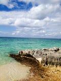 Palmen bij Caraïbisch strand dichtbij overzees royalty-vrije stock foto's