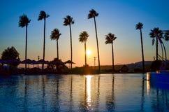 Palmen bij gouden Zonsondergang Royalty-vrije Stock Foto's