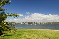 Palmen bij het strand in San Diego Stock Afbeelding