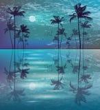 Palmen bij nacht met maan stock illustratie