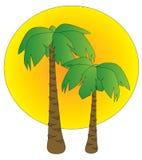 Palmen bij zonsondergang Royalty-vrije Stock Afbeelding