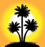 Palmen bij zonsondergang vector illustratie