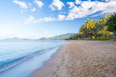 Palmen-Bucht strandnah Lizenzfreies Stockfoto