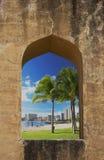Palmen buiten royalty-vrije stock afbeeldingen