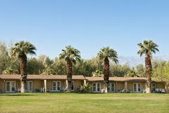 Palmen dichtbij de lage bouw Stock Foto