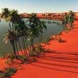 Palmen dichtbij oase stock afbeeldingen