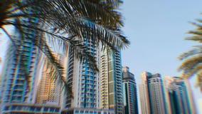 Palmen die op de achtergrond van high-rise gebouwen in Doubai groeien stock video