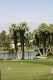 Palmen door een vijver op de golfcursus Stock Foto's