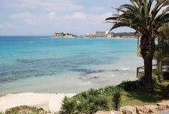 Palmen durch den sandigen Strand, haarscharfe das Türkismeer und das p stockfotografie