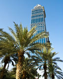 Palmen eines Wolkenkratzers und, Dubai, UAE Stockfotos