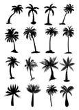 Palmen eingestellt Lizenzfreies Stockbild