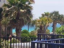Palmen en Blauwe Wateren royalty-vrije stock afbeeldingen