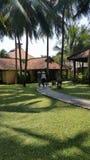 Palmen en bungaloes Royalty-vrije Stock Foto's
