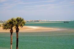 Palmen en de baai van Florida Royalty-vrije Stock Afbeeldingen