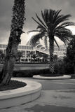 Palmen en de moderne bouw stock afbeelding