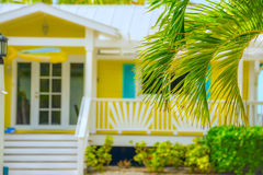 Palmen en de zomerhuis stock fotografie