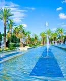 Palmen en fontein royalty-vrije stock fotografie